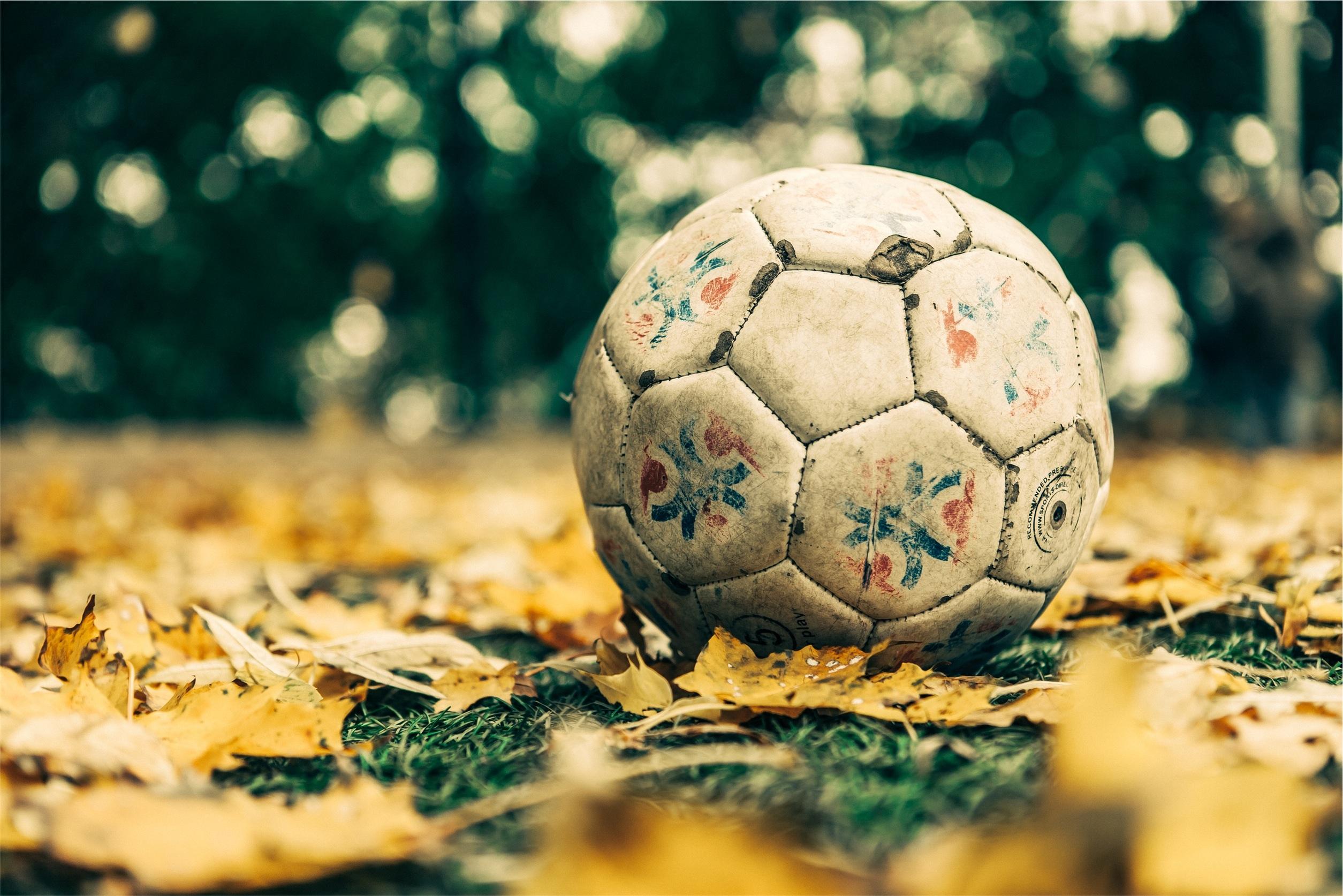 μπαλόνι, Ποδόσφαιρο, φύλλα, γκαζόν, γρασίδι, μπάλα - Wallpapers HD - Professor-falken.com