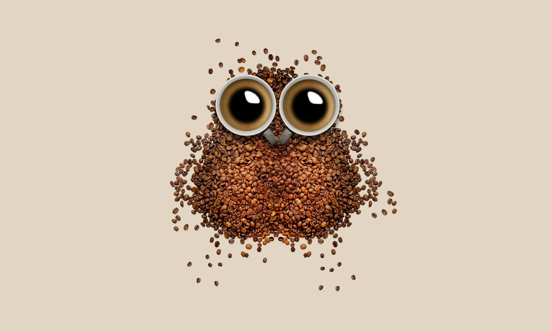 咖啡, 猫头鹰, 杯, 咖啡豆, 眼睛, 布朗 - 壁纸 - 教授-falken.com