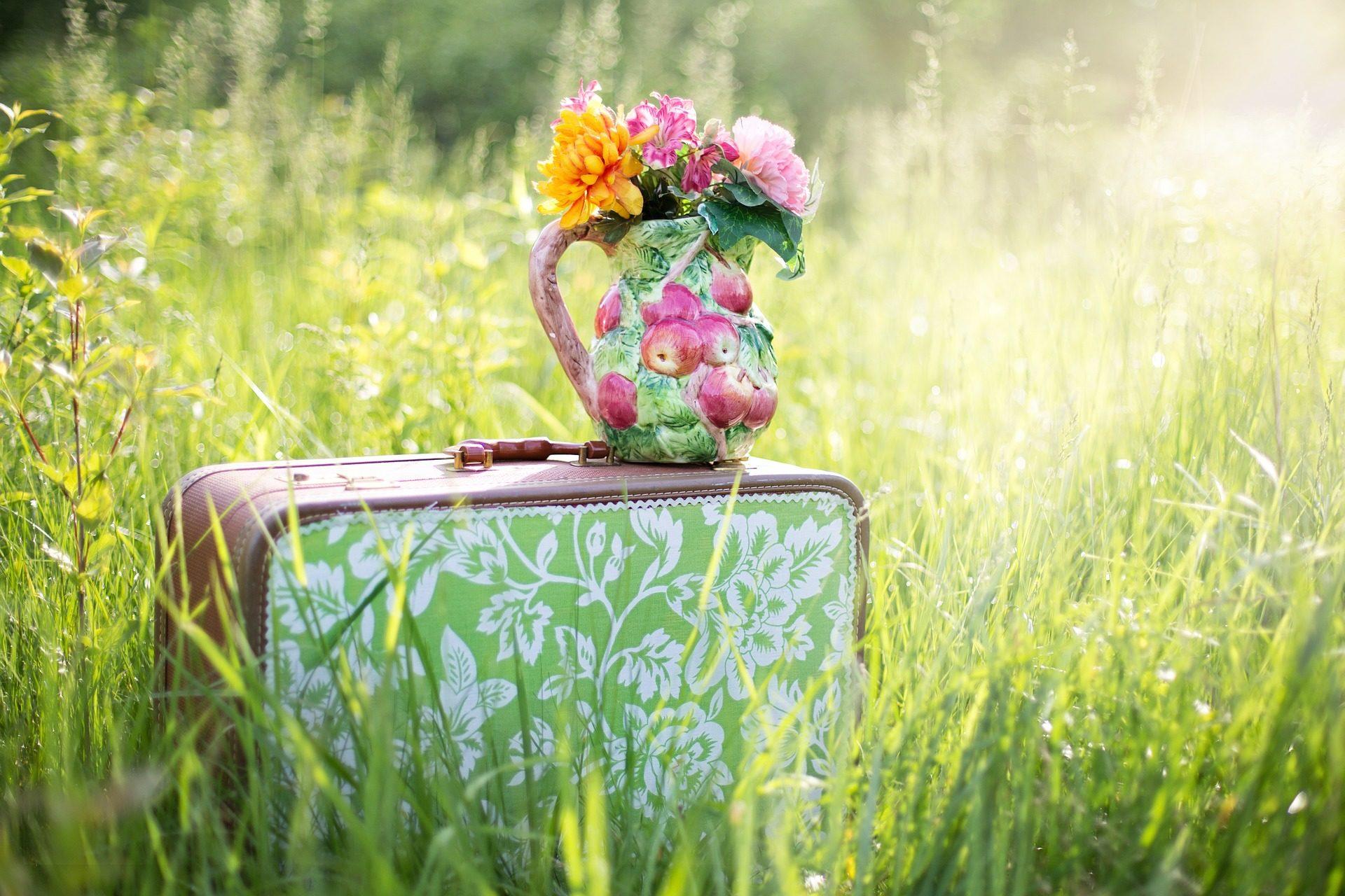 手提箱, 花瓶, 花, 字段, 草 - 高清壁纸 - 教授-falken.com
