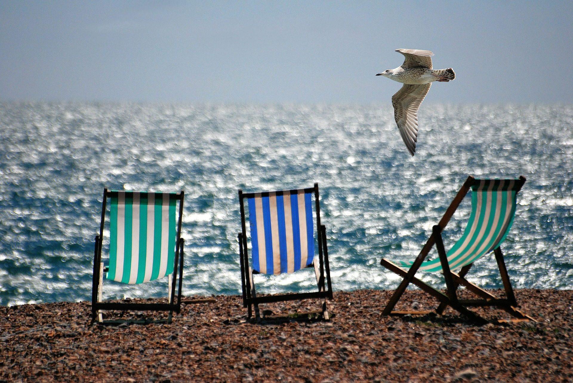 стулья, Пляж, Чайка, камни, Море - Обои HD - Профессор falken.com