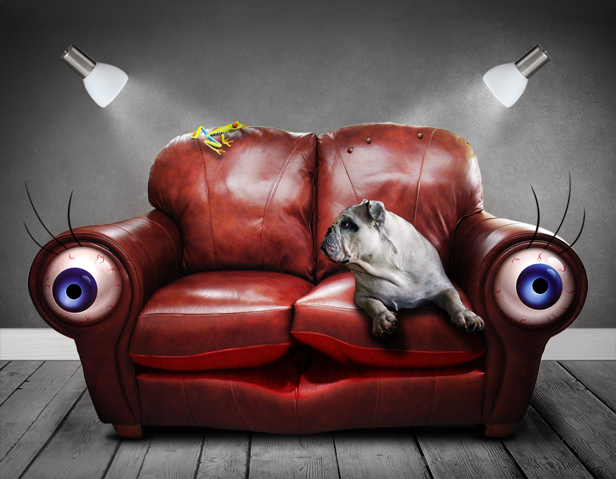мягкий уголок, глаза, собака, сюрреалистический, Фэнтези - Обои HD - Профессор falken.com