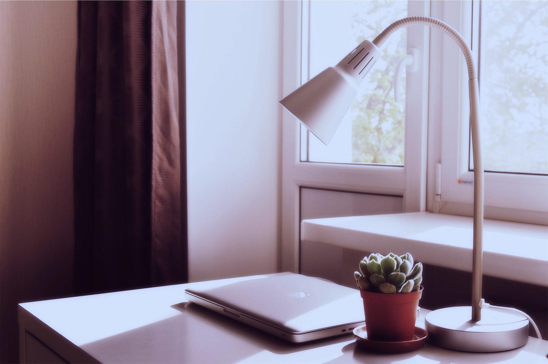 lampe, Cactus, ordinateur, Tableau, Ordinateur de bureau - Fonds d'écran HD - Professor-falken.com