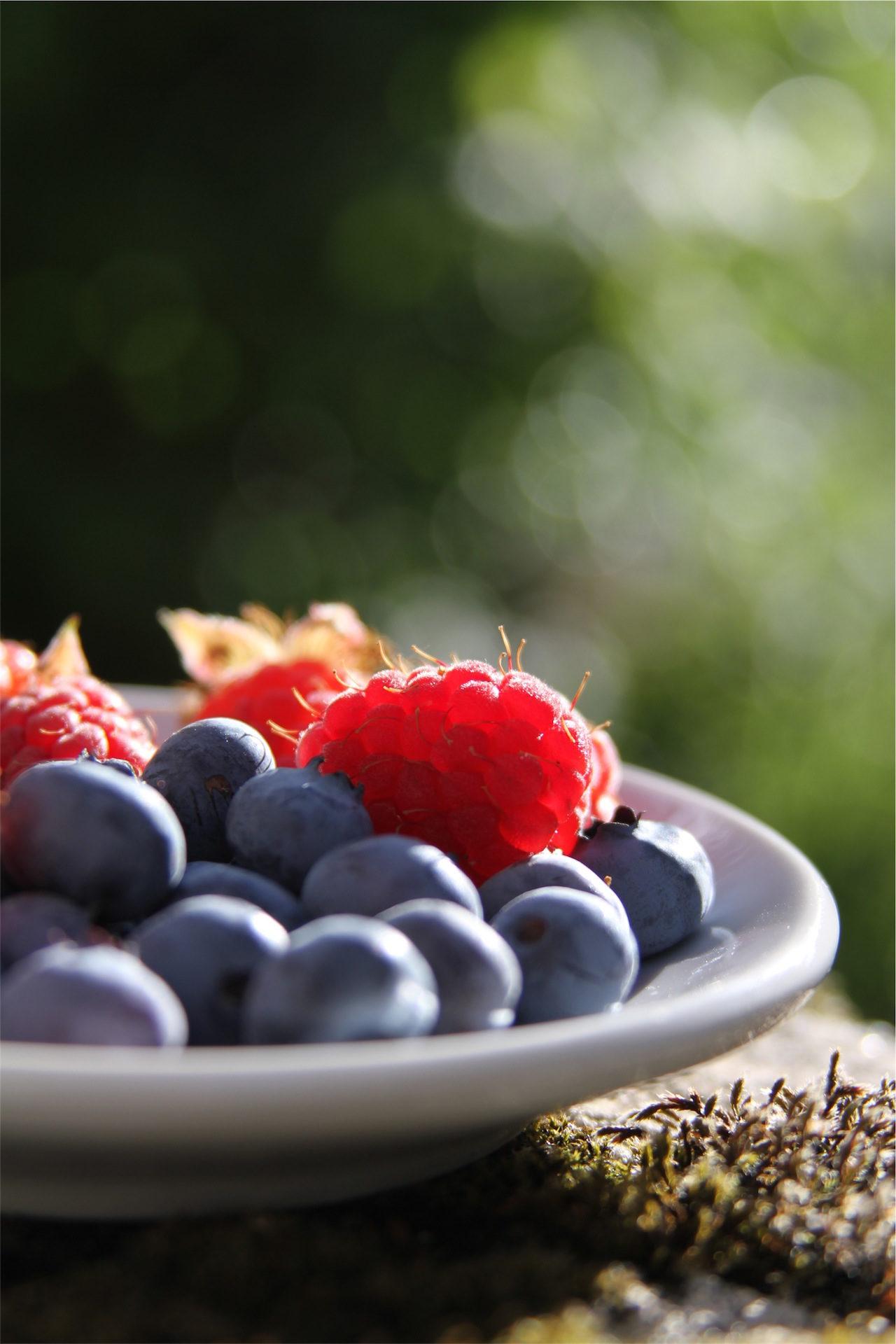 frutas, arándanos, moras, rojas, plato - Fondos de Pantalla HD - professor-falken.com