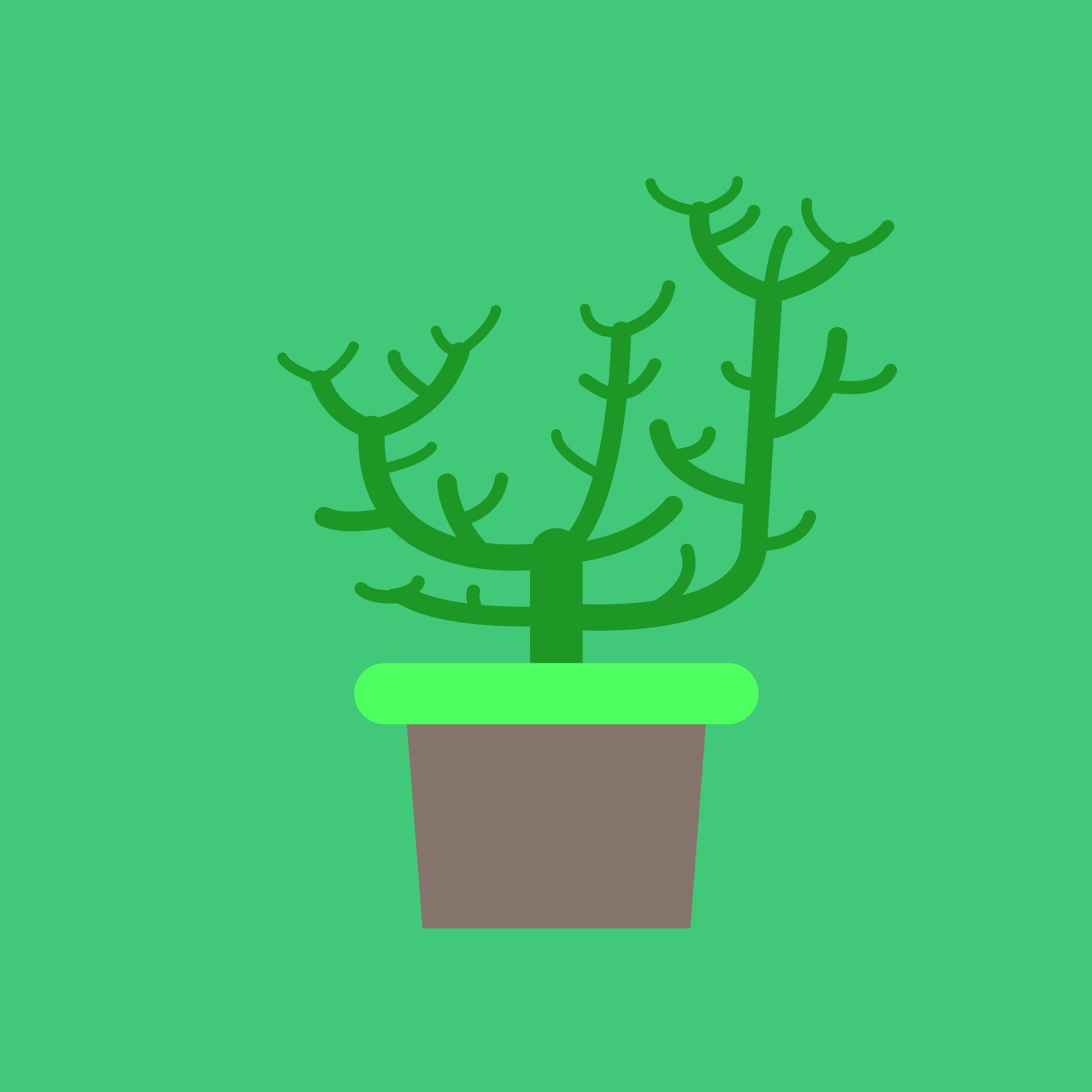 1 階, maceta, cactus, グリーン, marrón - HD の壁紙 - 教授-falken.com
