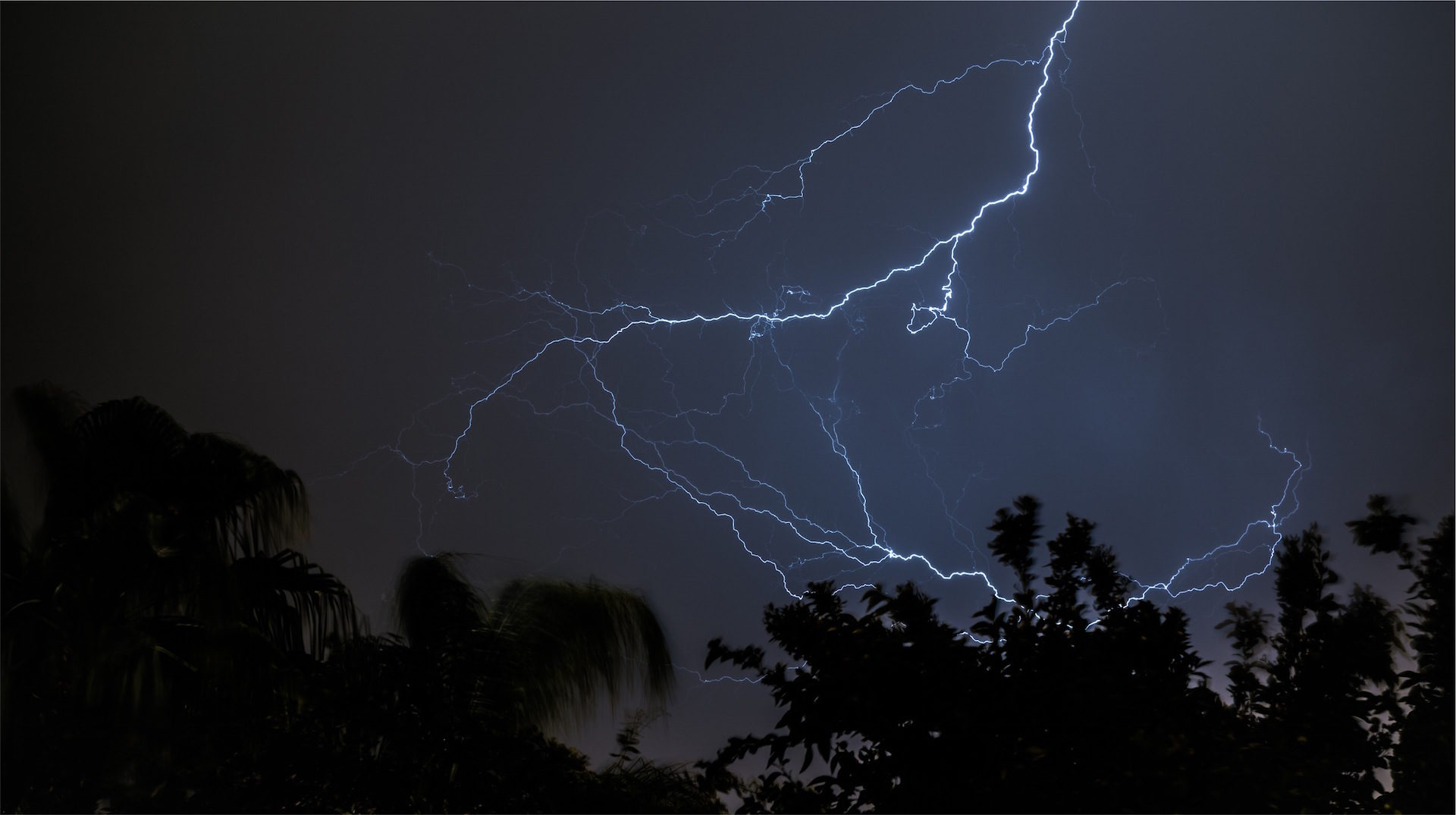 Ray, Tempesta, Fulmine, pioggia, alberi - Sfondi HD - Professor-falken.com