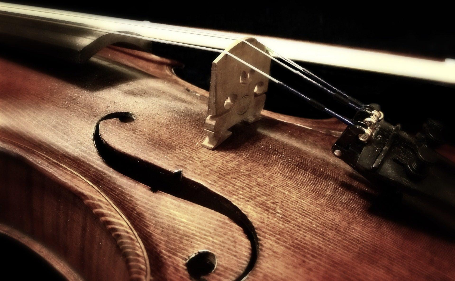 violino, strumento, corda, legno, albero - Sfondi HD - Professor-falken.com