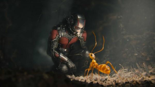 10 большие обои другого супергероев Marvel, Человек муравей - Изображение 3 - Профессор falken.com