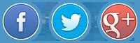 Facebook 上の URL を共有する方法, Twitter や Google + - イメージ 1 - 教授-falken.com