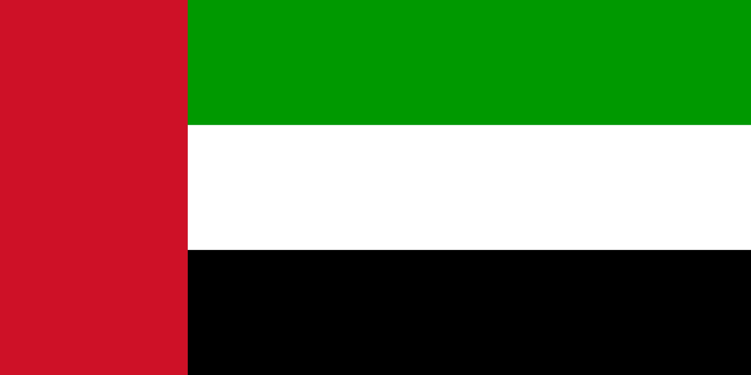 Объединённые Арабские Эмираты, страна, Эмблема, логотип, символ - Обои HD - Профессор falken.com