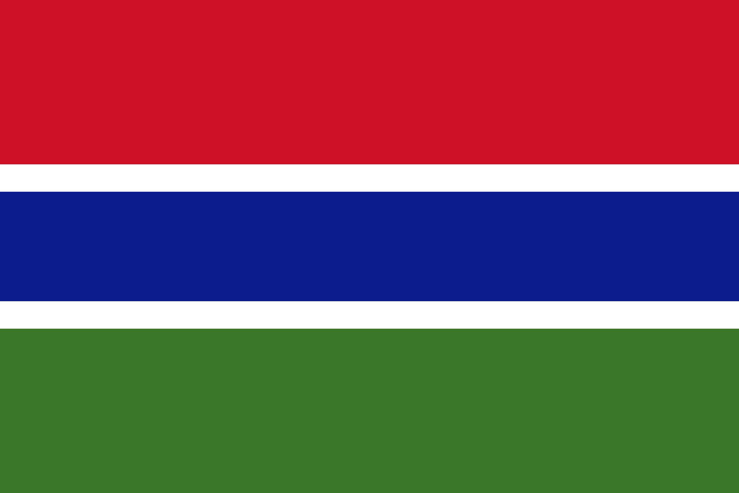 gambia, país, emblema, insignia, símbolo - Fondos de Pantalla HD - professor-falken.com