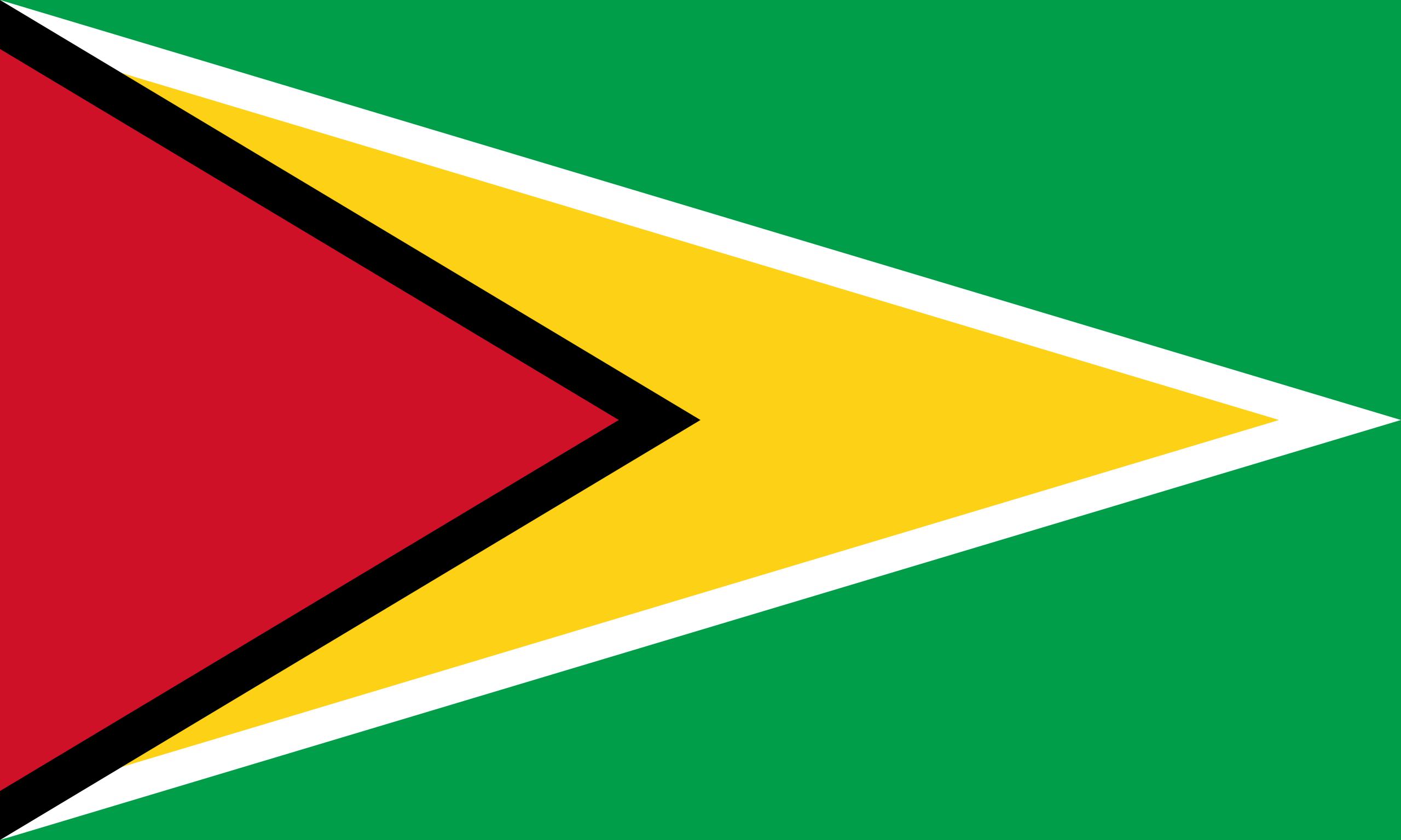 Гайана, страна, Эмблема, логотип, символ - Обои HD - Профессор falken.com