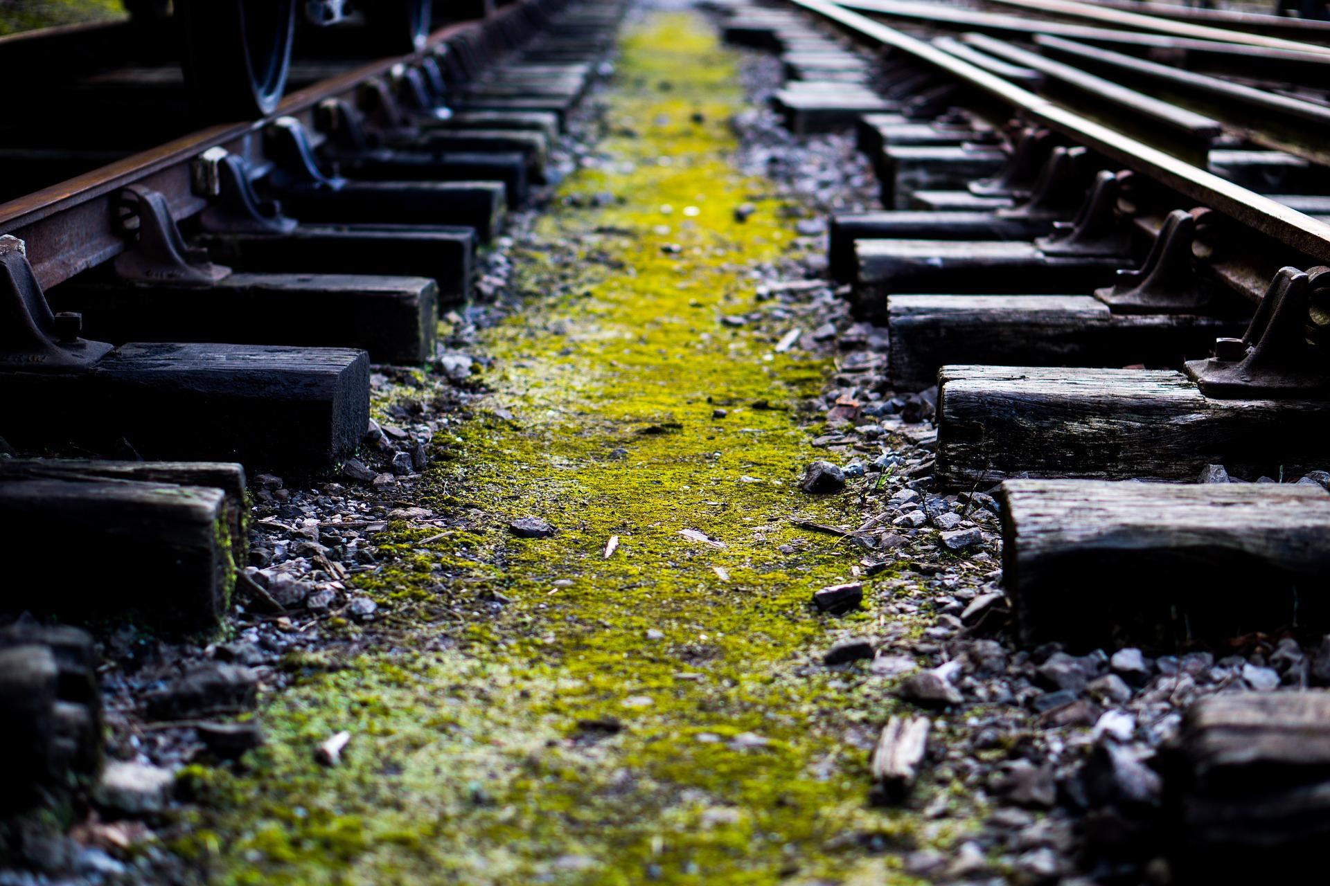 vías de tren, tren, ferrocarril, línea de tren, musgo, transporte, hierro, ruta, verde - Fondos de Pantalla HD - professor-falken.com