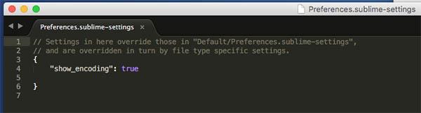 Come visualizzare la corrente una codifica di file di testo Sublime 3 - Immagine 2 - Professor-falken.com