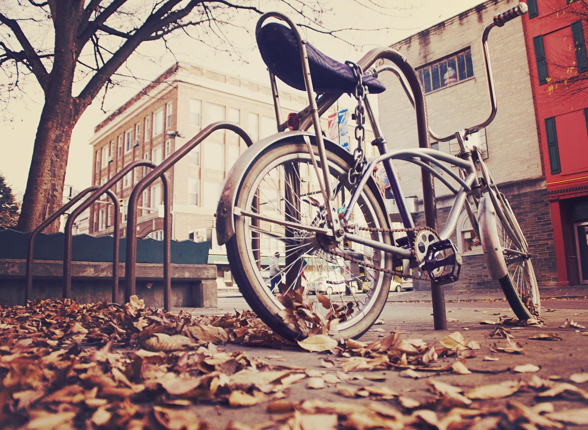 bicicleta, velho, vintage, Cadeia de, folhas - Papéis de parede HD - Professor-falken.com