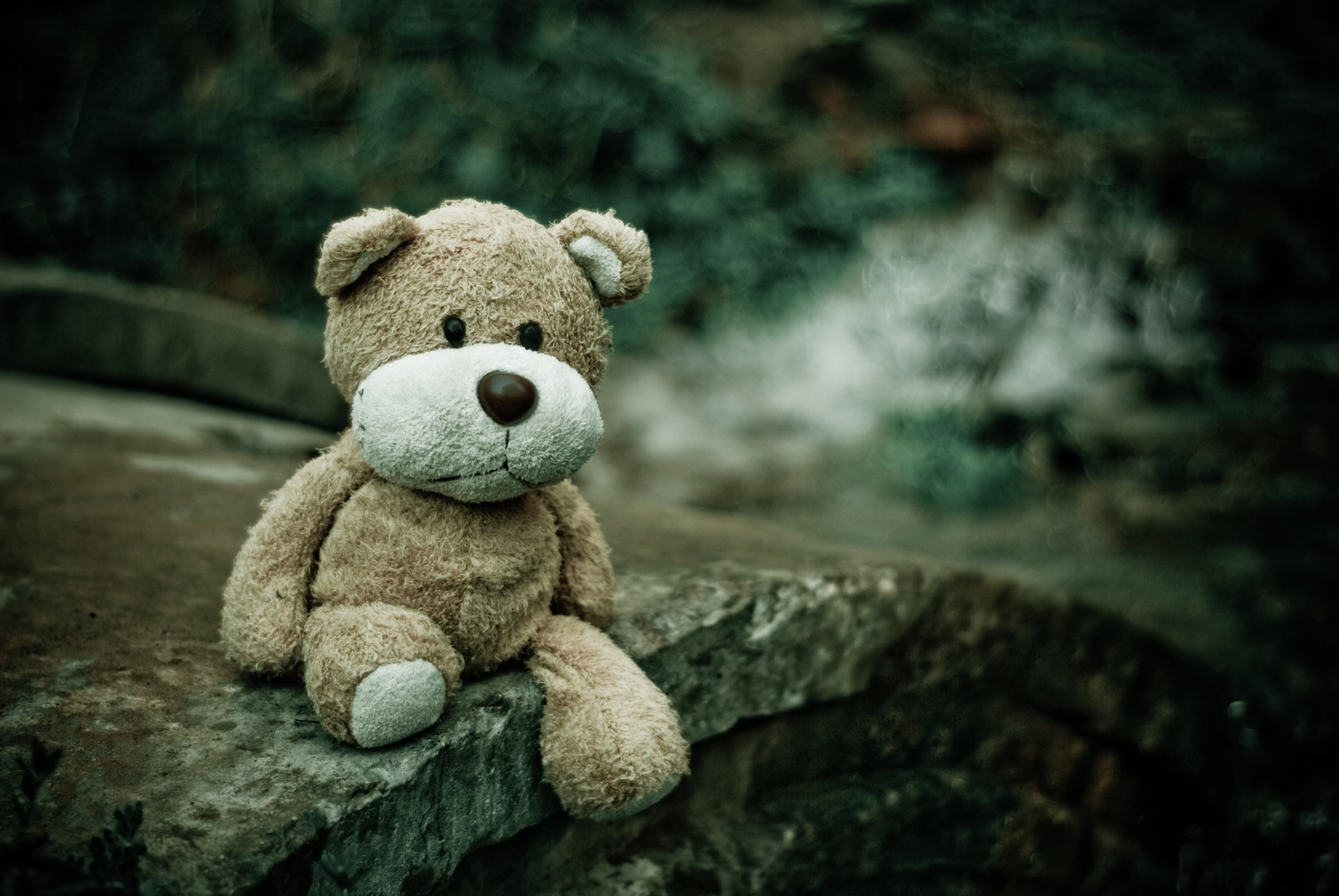 Плюшевый медведь, Тедди, мост, нежность, Природа - Обои HD - Профессор falken.com