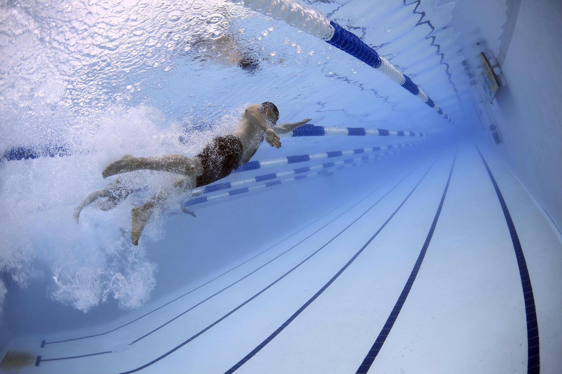 プール, スイミング, 競争, スイマー, 選手, オリンピック スイミング プール - HD の壁紙 - 教授-falken.com