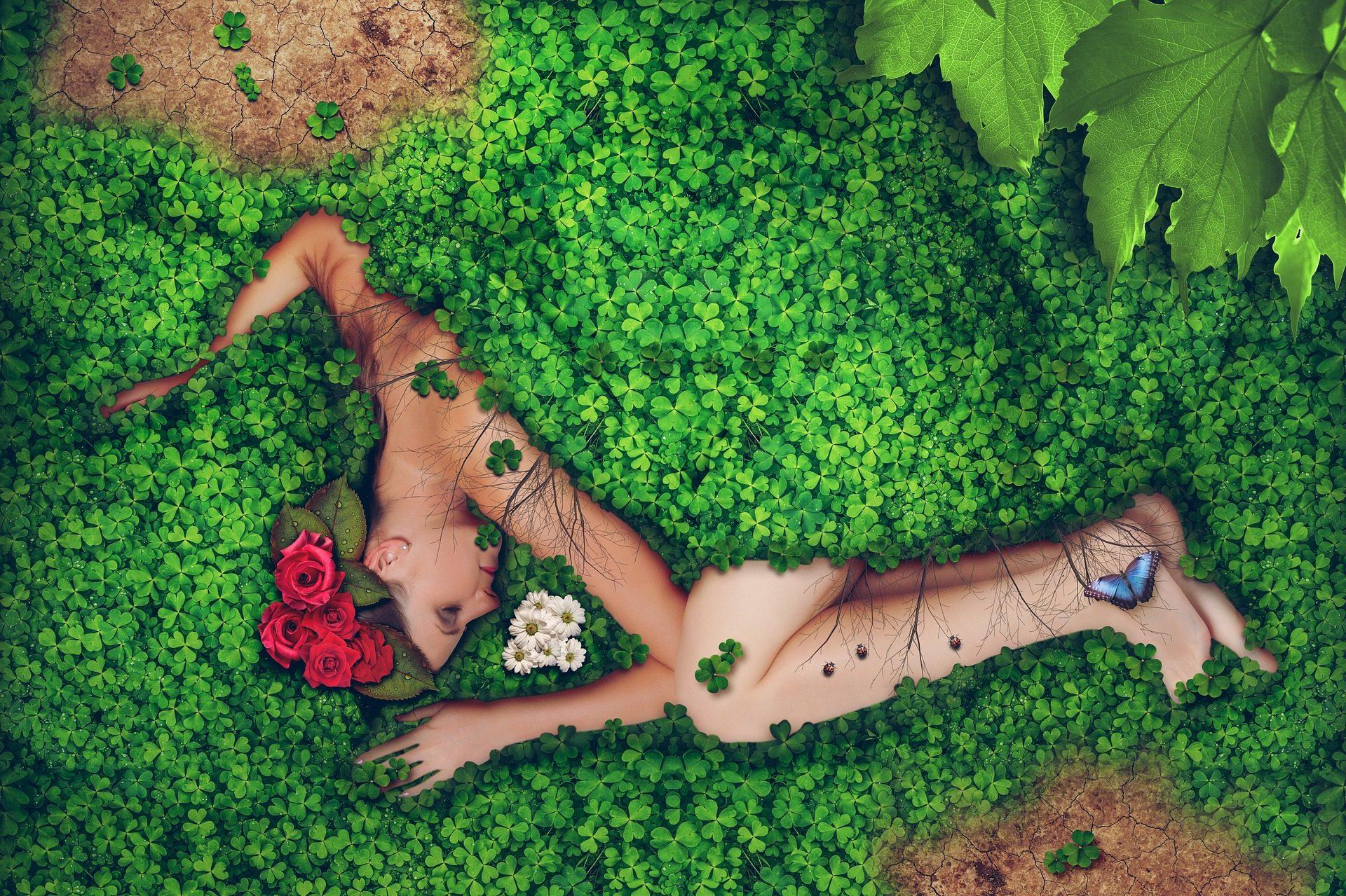 女性, クローバー, 花, 自然, 蝶 - HD の壁紙 - 教授-falken.com