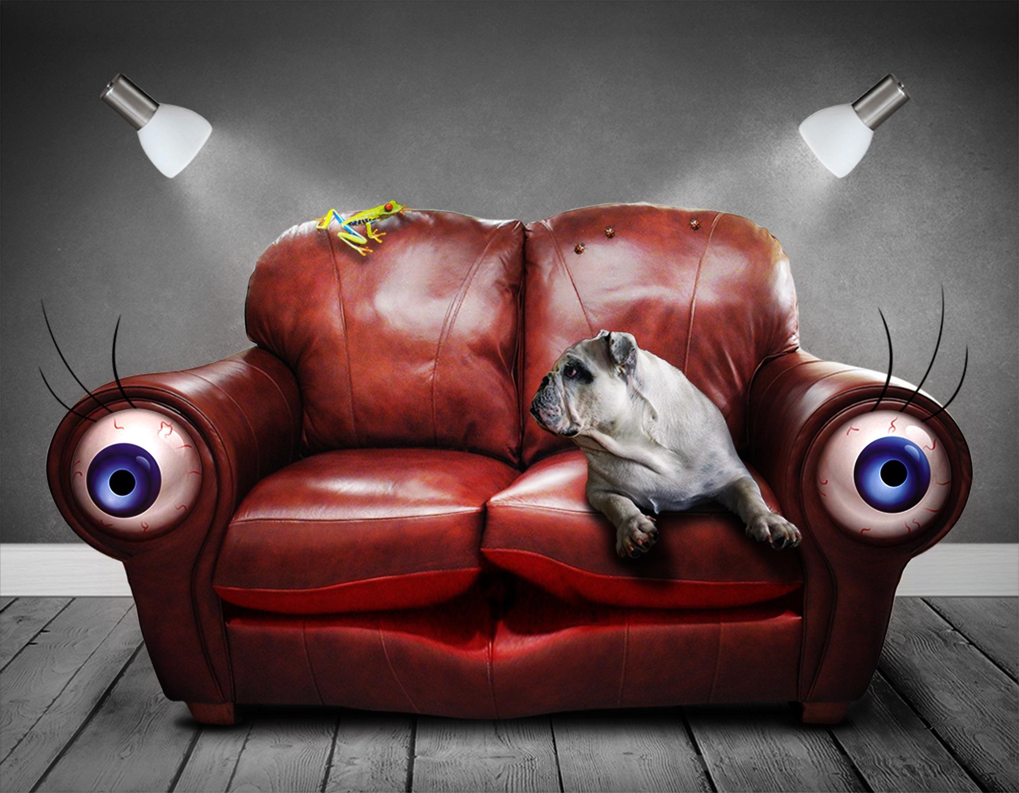ソファ, 目, 犬, シュールです, ファンタジー - HD の壁紙 - 教授-falken.com