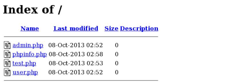 如何避免你的 Apache 服务器的文件和目录听 - 图像 1 - 教授-falken.com