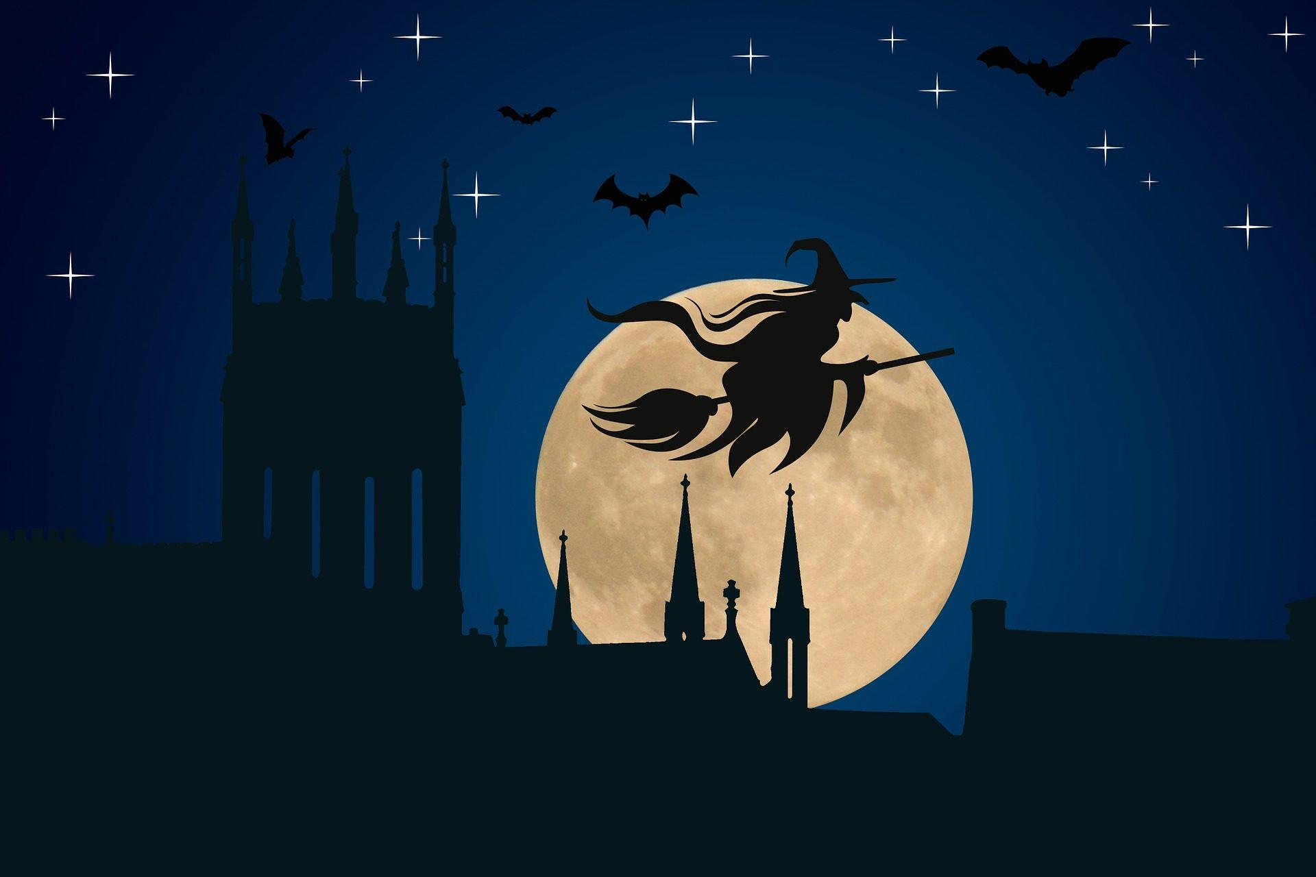 الساحرة, مكنسة, الخفافيش, القمر, ليلة, تخويف, عيد الهالوين - خلفيات عالية الدقة - أستاذ falken.com