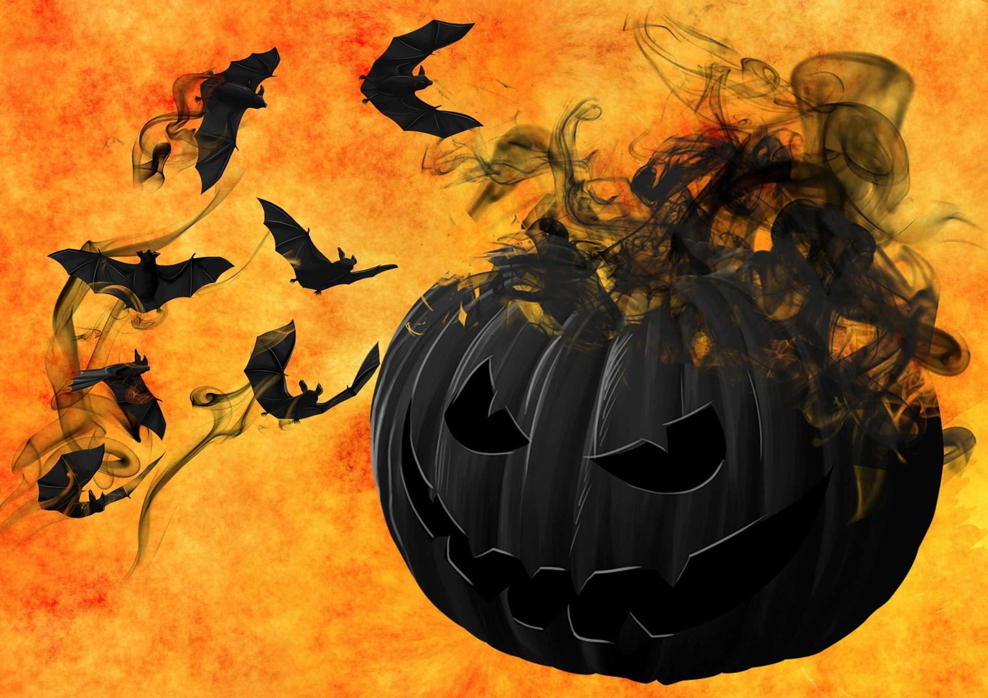 Abóboras, morcegos, fumaça, névoa, assustar, medo, horror, Dia das bruxas - Papéis de parede HD - Professor-falken.com