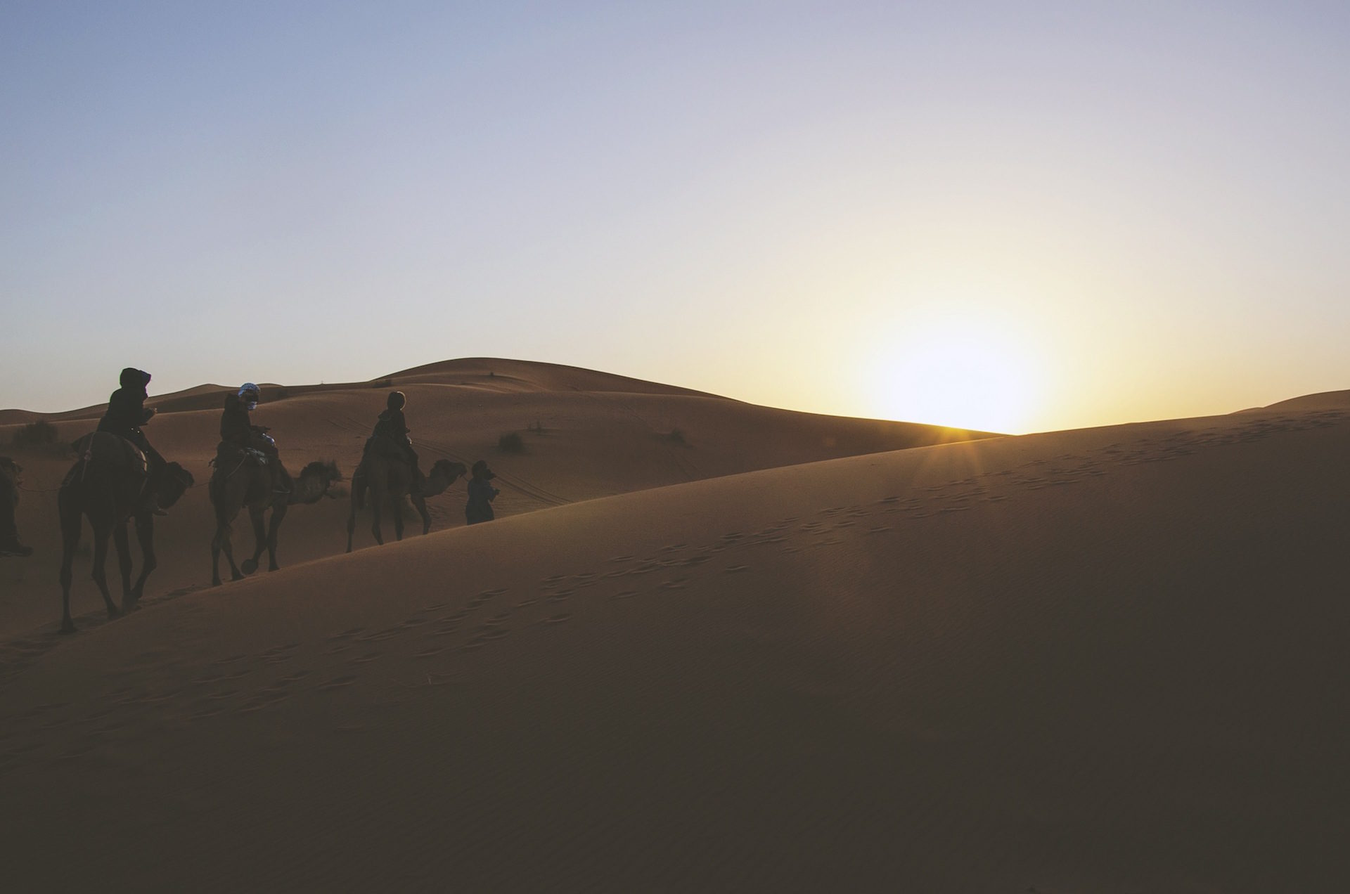 砂漠, ラクダ, 砂, 足跡, ,太陽 - HD の壁紙 - 教授-falken.com