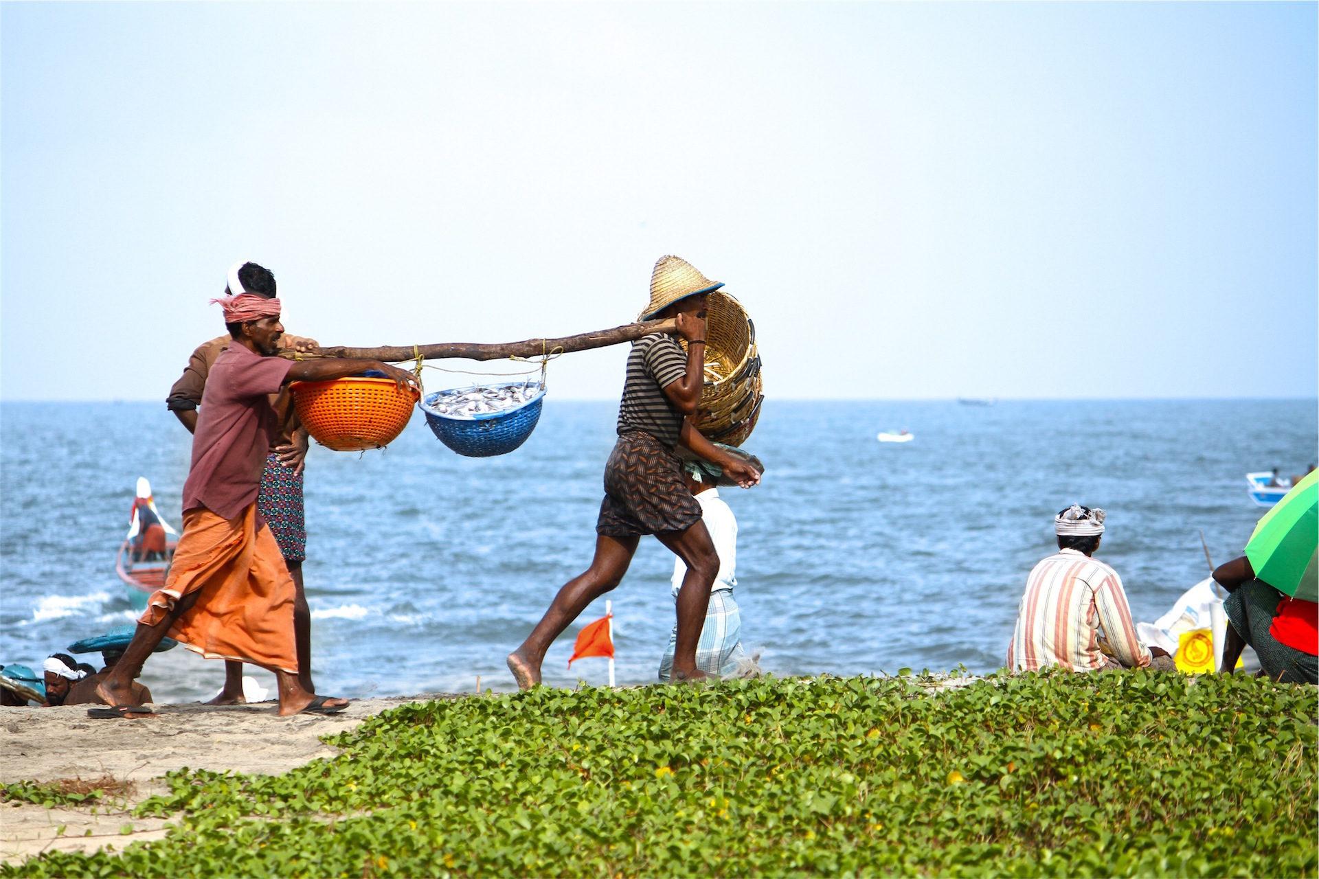 pescadores, trabajo, mar, pescado, vidas - Fondos de Pantalla HD - professor-falken.com