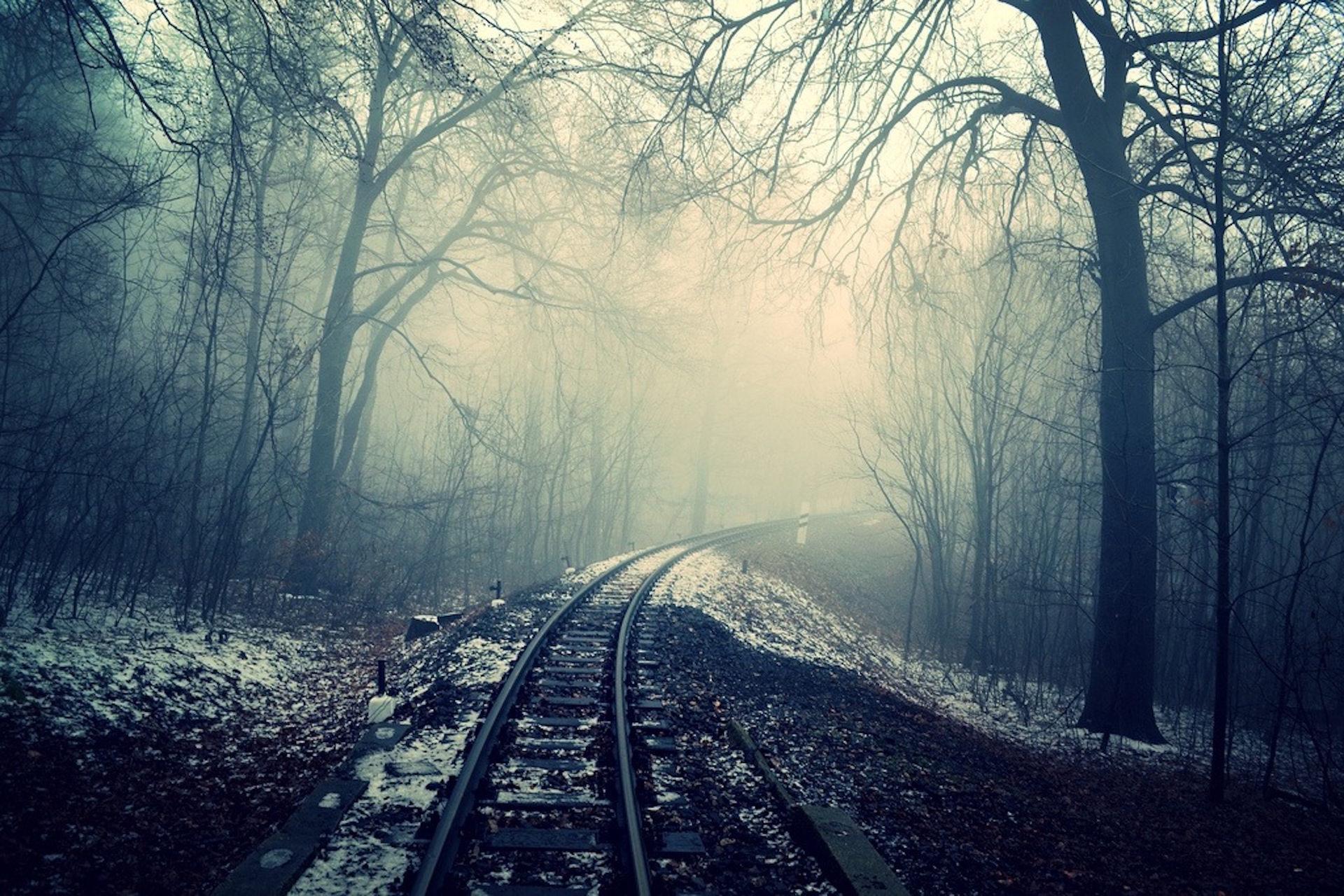 voies, train, brouillard, Forest, Soledad - Fonds d'écran HD - Professor-falken.com