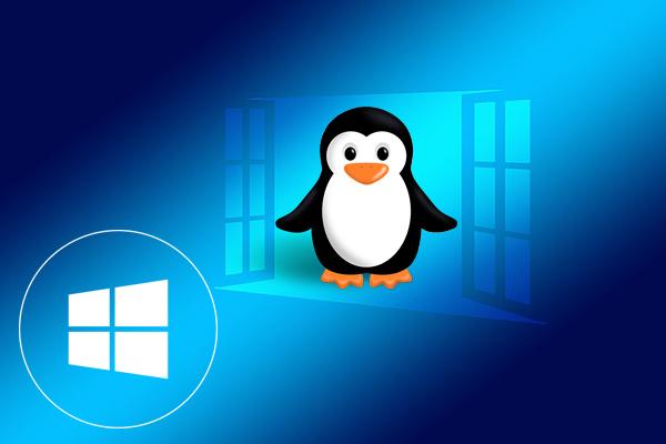 Πώς να τρέξει Linux από μια μονάδα flash ή μια μονάδα USB ως μια εικονική μηχανή