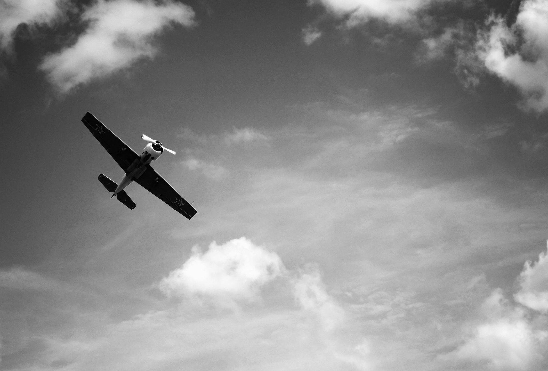 легкий самолет, самолеты, Муха, Небо, в черно-белом - Обои HD - Профессор falken.com