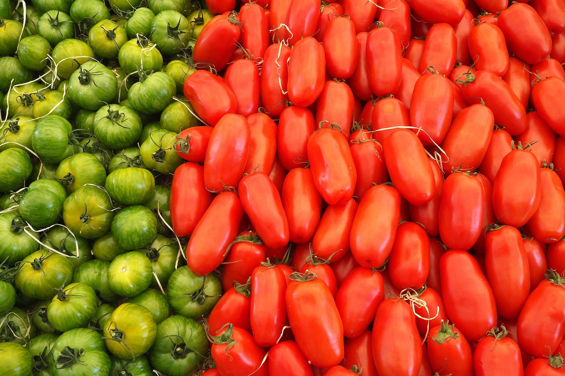 verduras, トマト, 赤, グリ�野菜etales - HD の壁紙 - 教授-falken.com