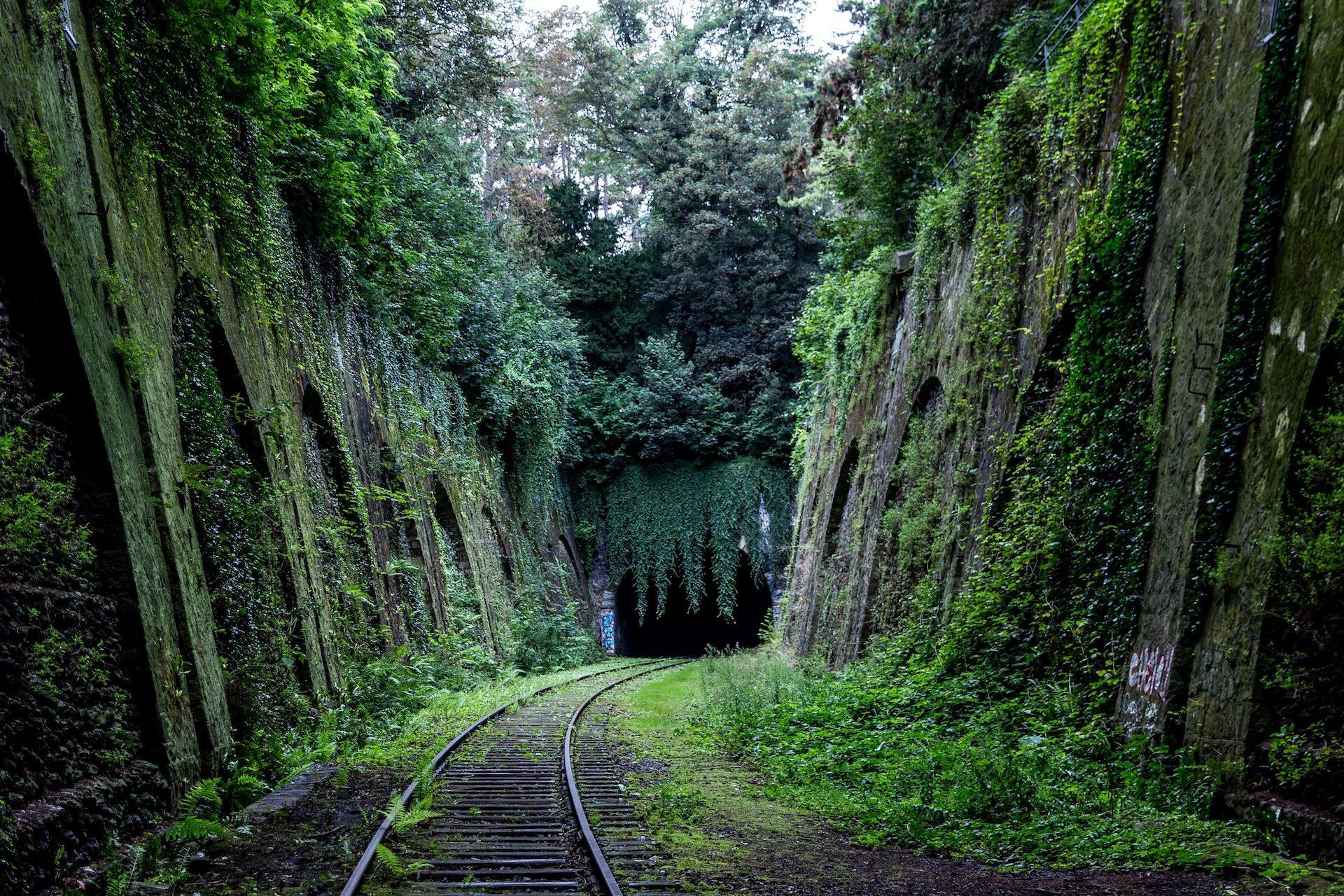 via, pasaje, tunel, maleza, árboles - Fondos de Pantalla HD - professor-falken.com