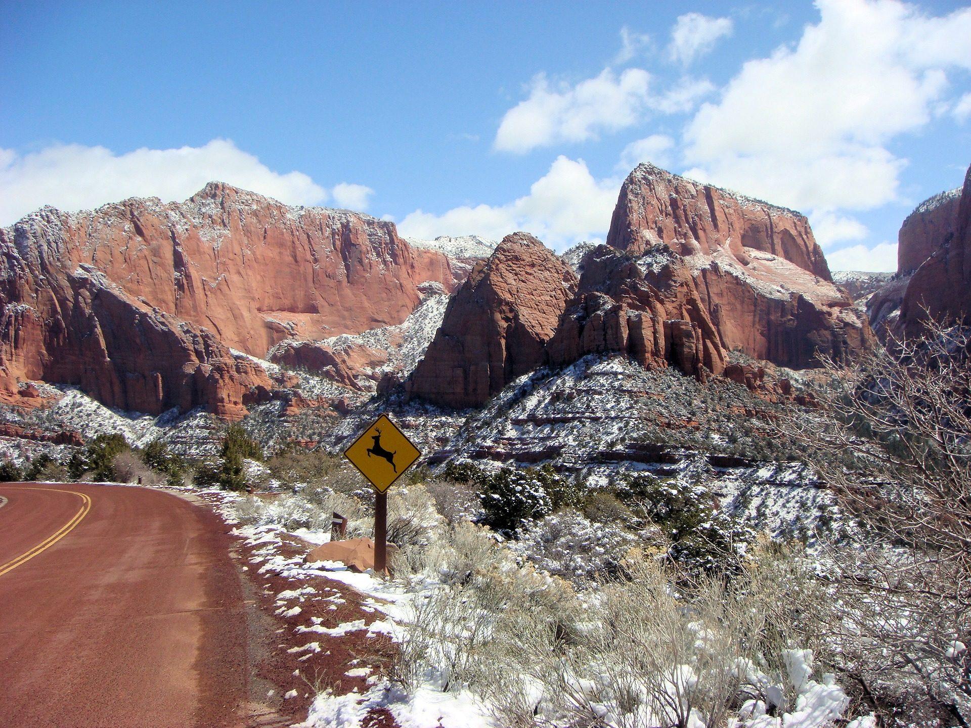 沙漠, 雪, 奥, 国立公园, 锡安, 犹他州 - 高清壁纸 - 教授-falken.com