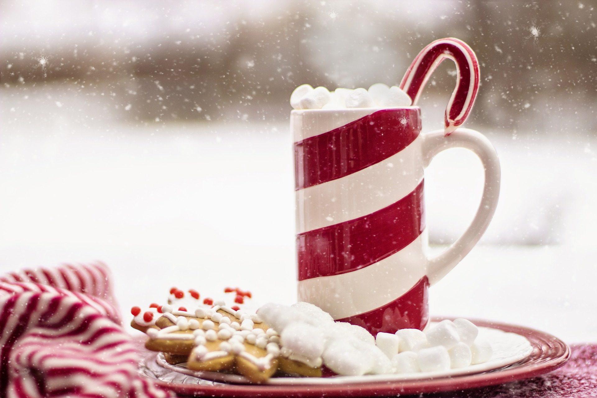 Κύπελλο, ζαχαροκάλαμο, τα cookies, χιόνι, Χριστούγεννα - Wallpapers HD - Professor-falken.com