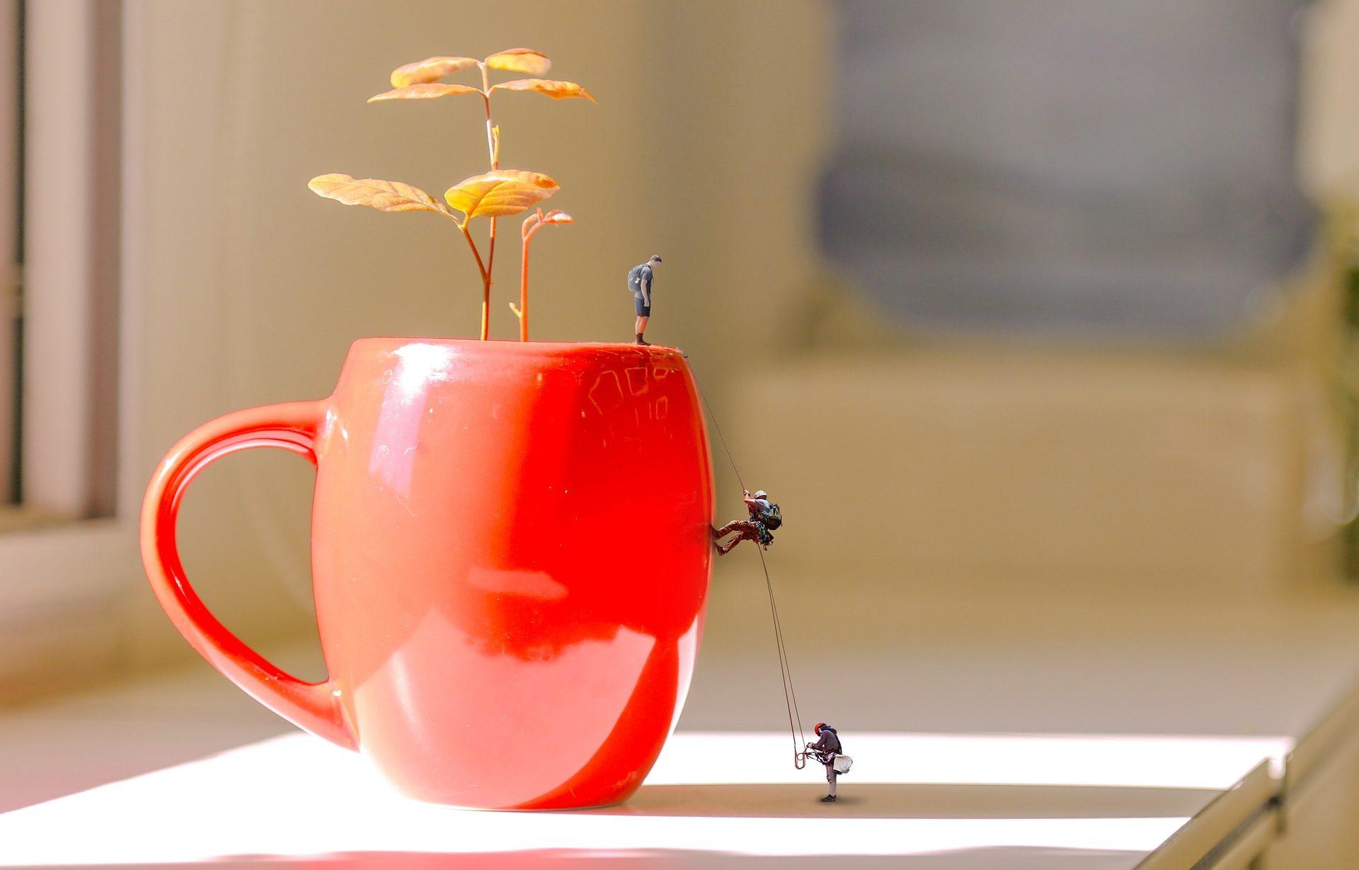 كأس, وعاء, المتسلقين, سلاسل, دمى - خلفيات عالية الدقة - أستاذ falken.com
