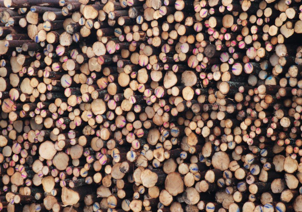 troncos, vigas, maderas, pintadas, montón, tala, 1612190836