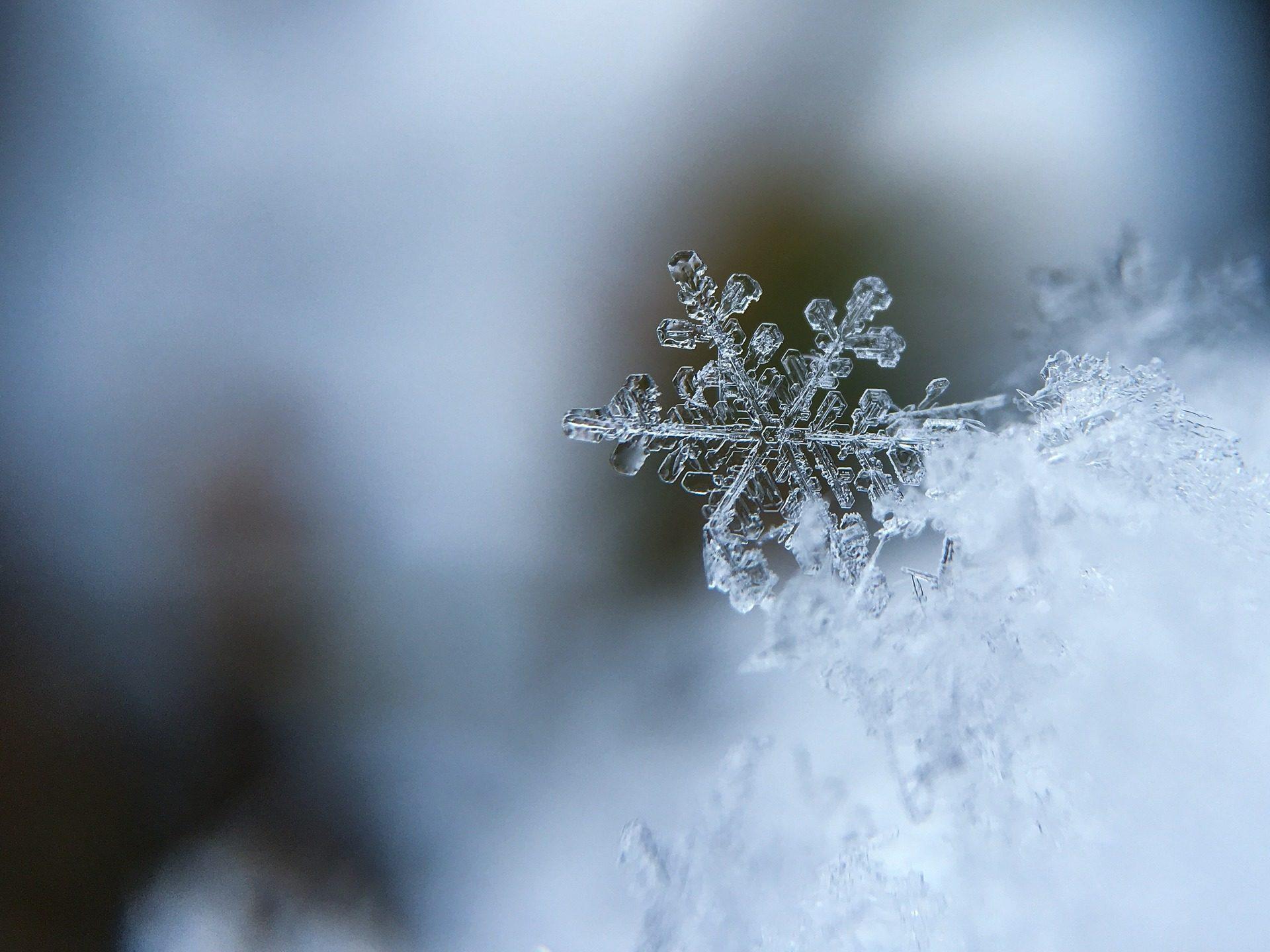 Fiocchi Di Neve Di Carta 3d : Carta da parati del fiocco di neve neve ghiaccio congelati