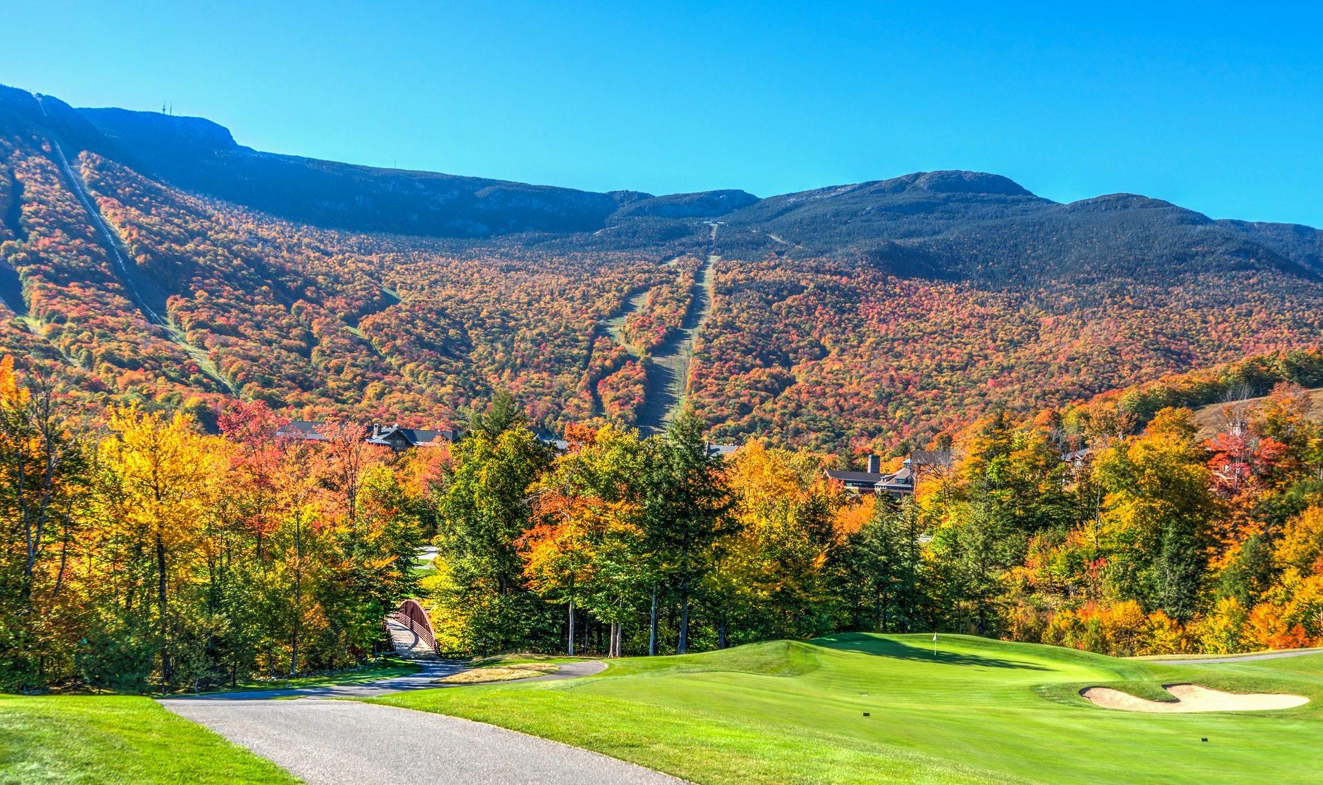 Wald, Feld, Laub, Montañas, Vermont - Wallpaper HD - Prof.-falken.com
