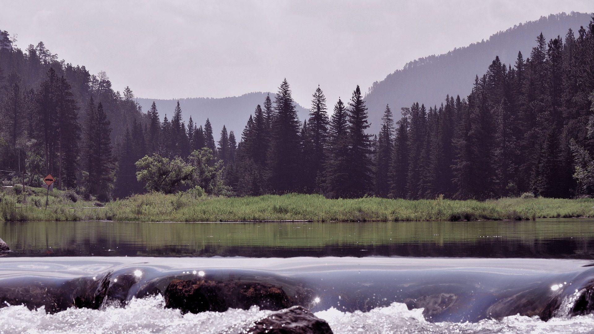 Wald, Montañas, Río, Rápidos, Bäume - Wallpaper HD - Prof.-falken.com