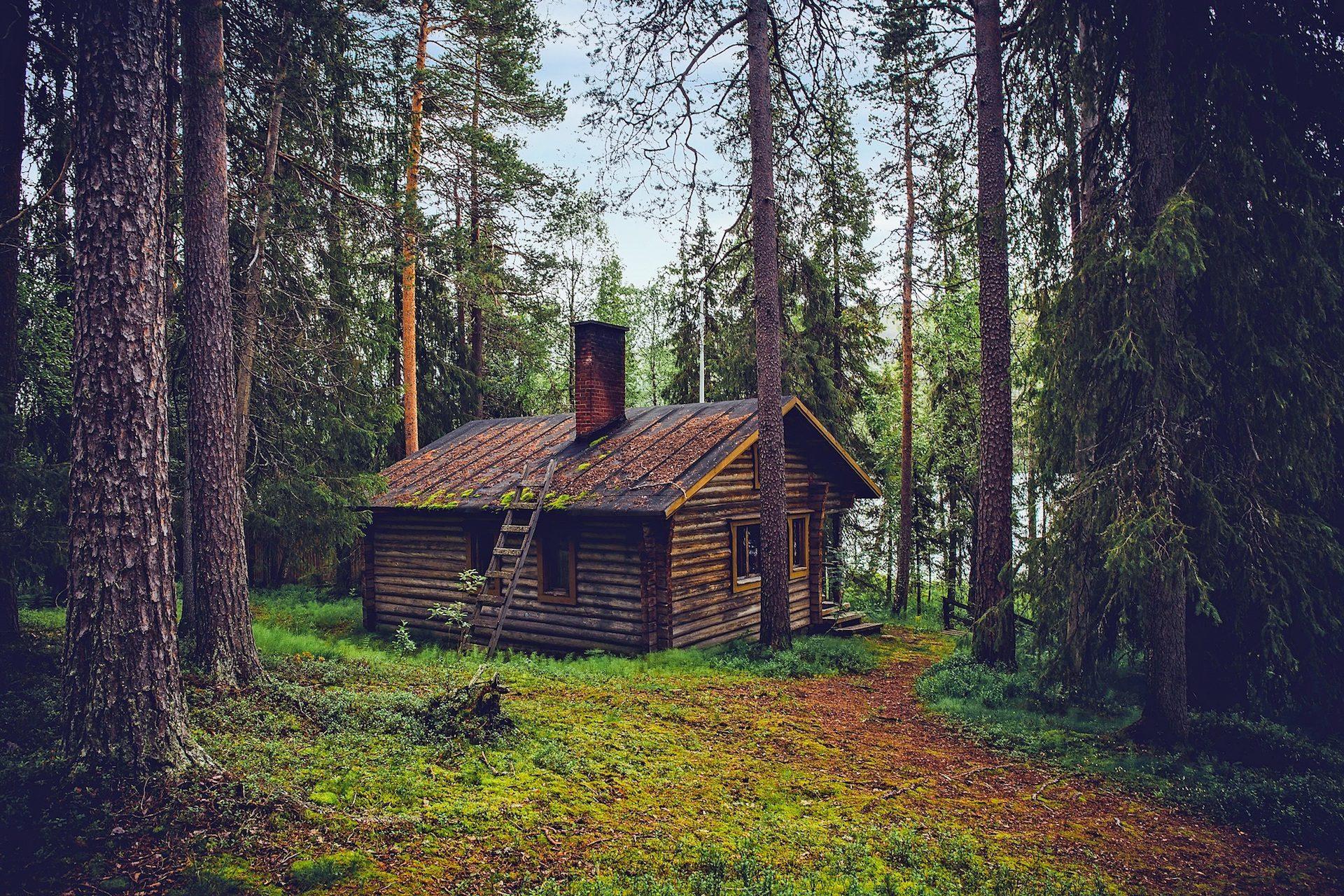 Resultado de imagem para caminho cabana no mato