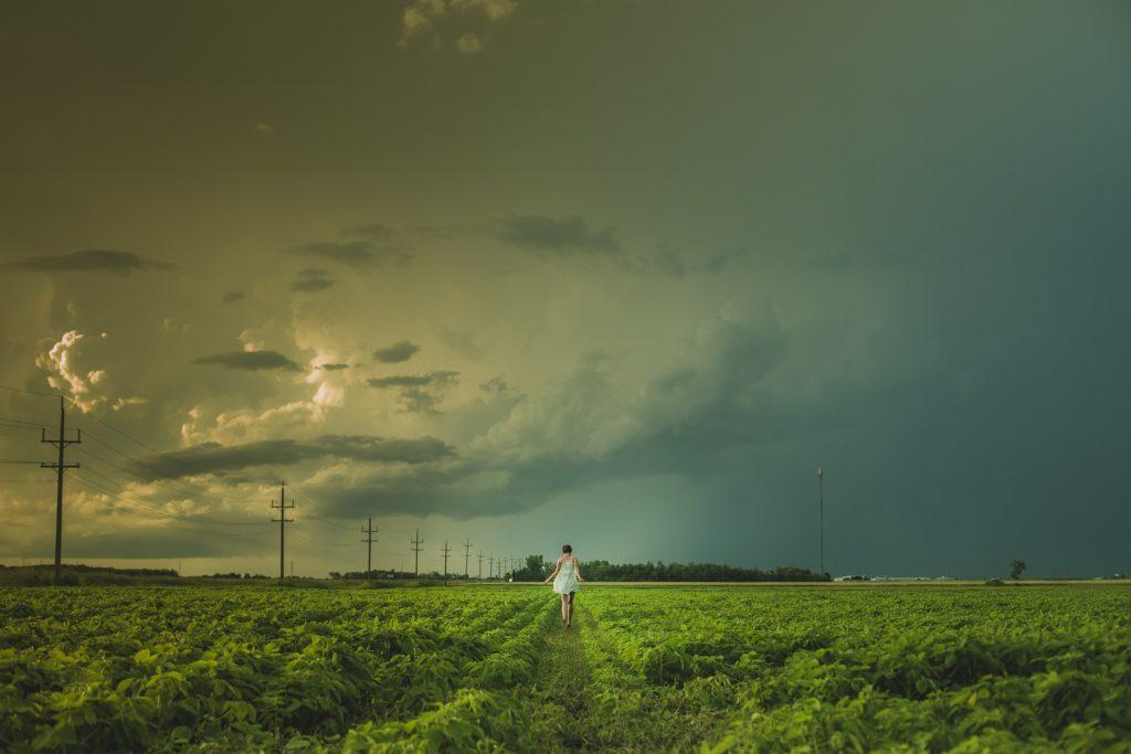campo, plantación, mujer, camino, despedida, ida, 1702251551