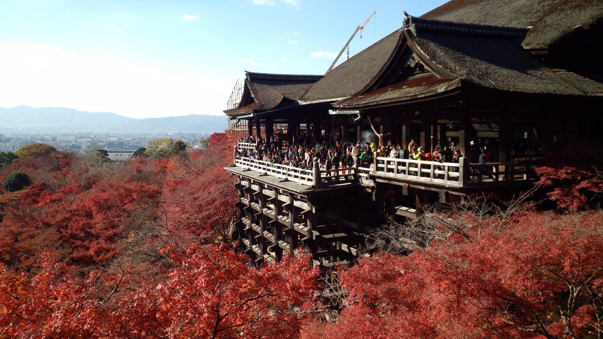 Σπίτι, arces, φθινόπωρο, Τουρισμός, kioto, Ιαπωνία - Wallpapers HD - Professor-falken.com