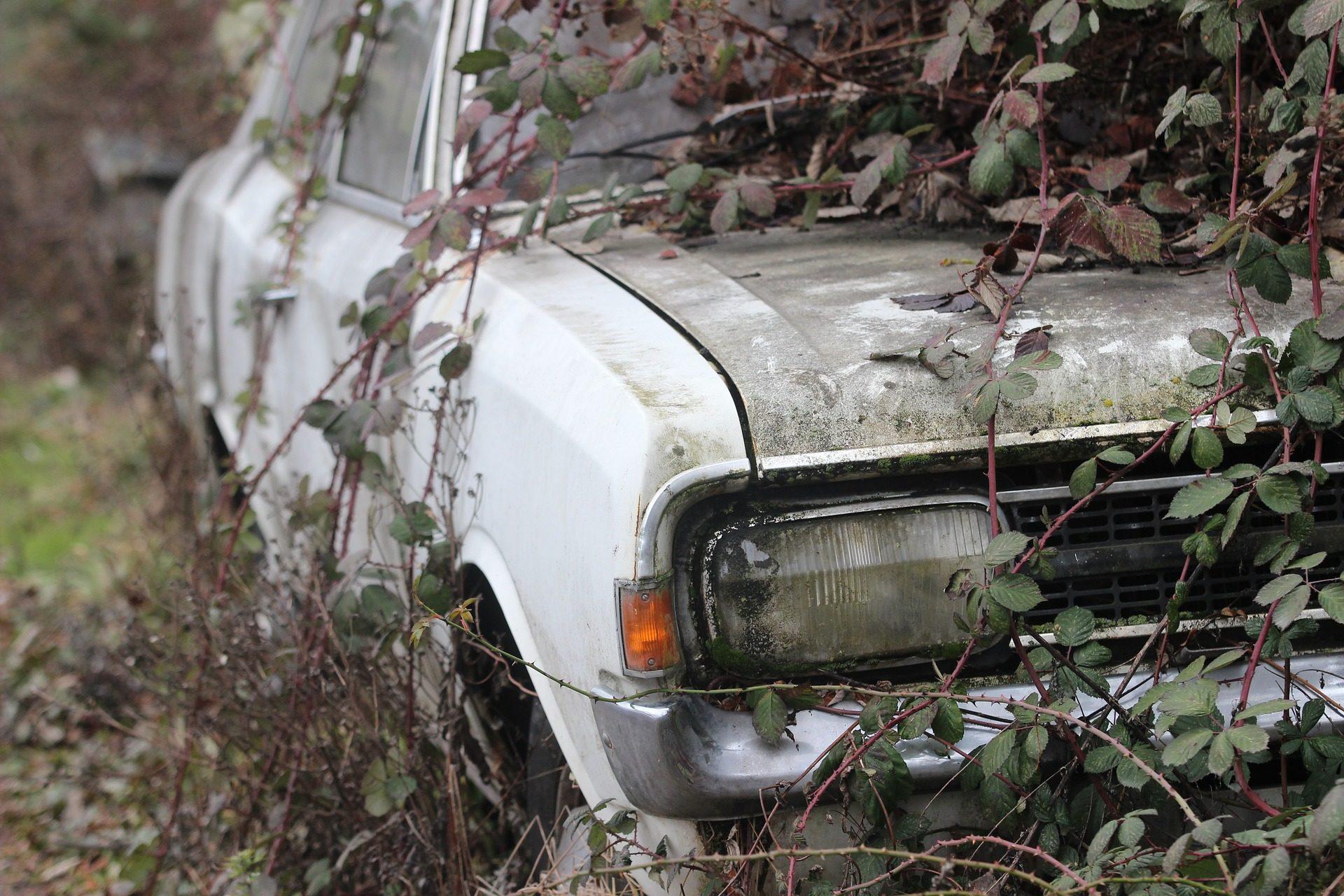 車, antiguo, 古い, 放棄, 忘れて, スクラップ - HD の壁紙 - 教授-falken.com