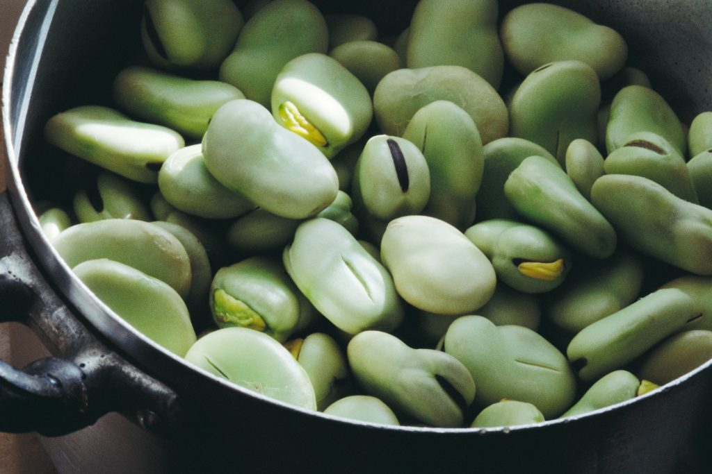 habas, vegetal, 饮食, vegana, orgánica, 1702092105