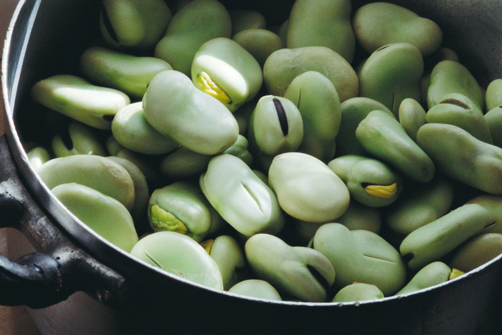 haricots, légume, régime alimentaire, Végétalien, organique - Fonds d'écran HD - Professor-falken.com