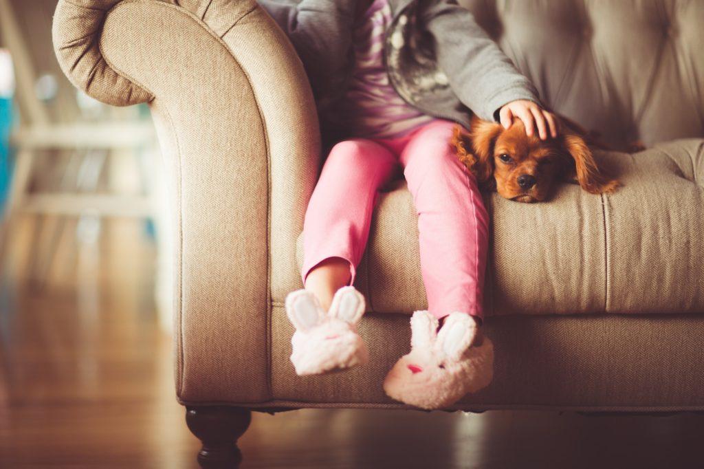 女孩, 小狗, 宠物, 狗, 沙发, 拖鞋, 1702050818