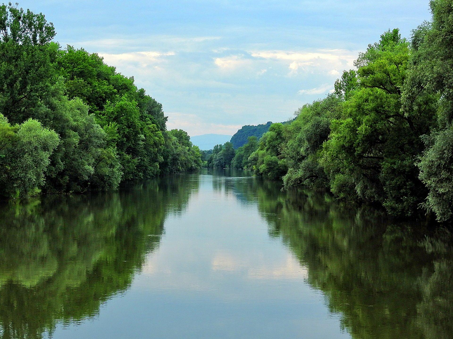 河, 树木, 平静, 宁静, Mur, 施蒂利亚州 - 高清壁纸 - 教授-falken.com