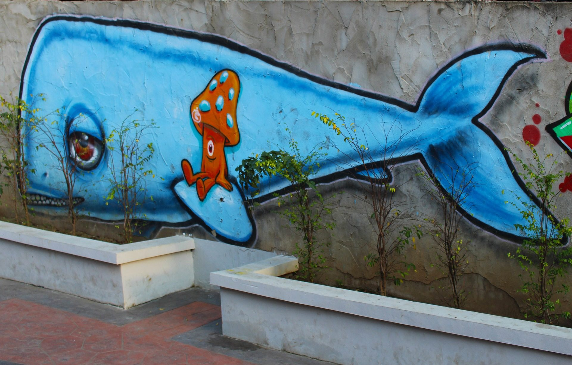 Fondo de pantalla de grafiti pintura pared ballena - Pintura de pared ...