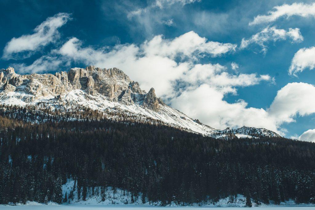 montaña, árboles, pico, cima, bosque, nieve, 1703062043