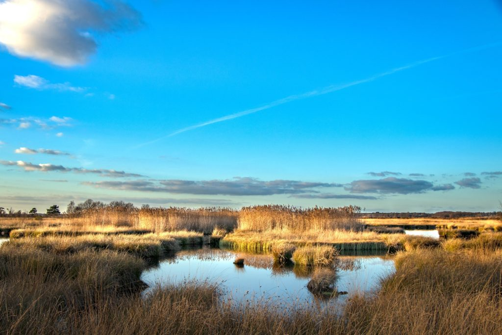 río, laguna, campo, cielo, nubes, reflejos, 1703272111